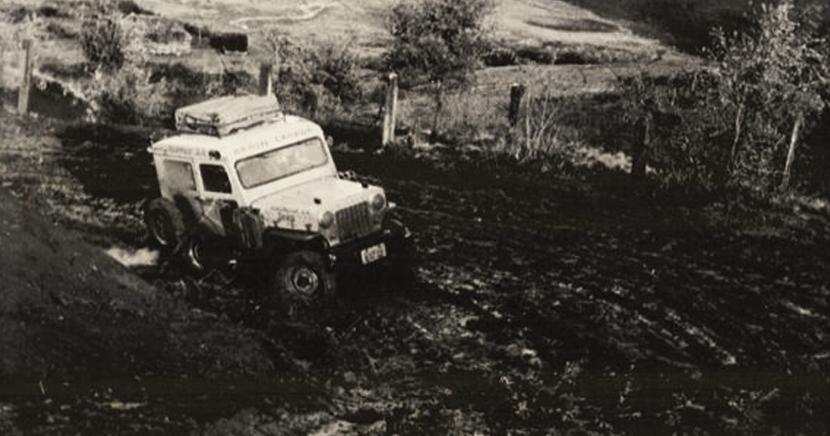 Operação Abacaxi